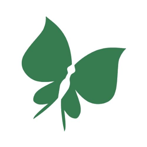 Logo VVKP